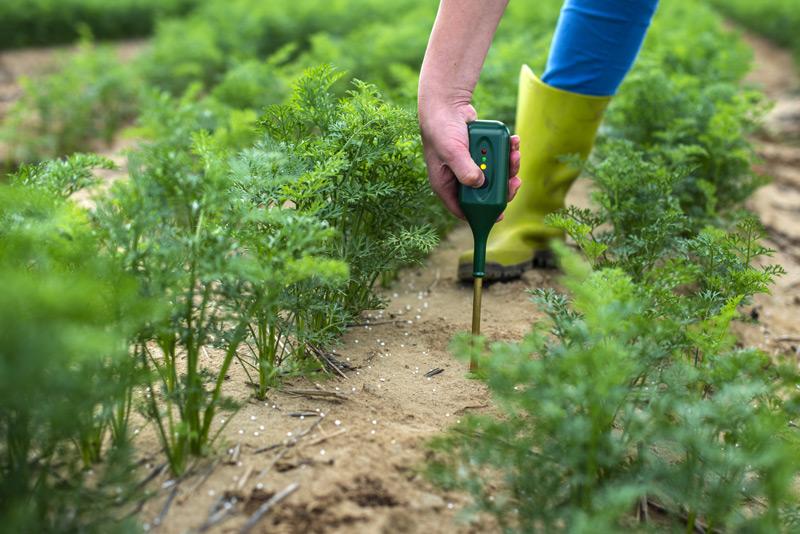 A pH-mérő kalibrálásának fontossága a mezőgazdaságban